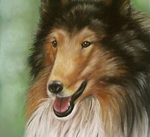 Collie by Monica C. Webster