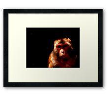 Deadly monk' Framed Print