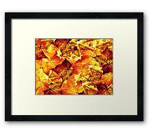 Leaves That Fall Framed Print