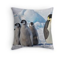 Snow Hill Island Emperor Penguin Rookery Throw Pillow