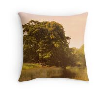 St Peters Church on River Avon, Throw Pillow