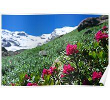 Macugnaga - Belvedere, Monte Rosa Poster