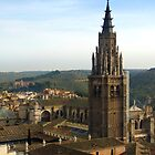 Toledo Cathedral by vivsworld