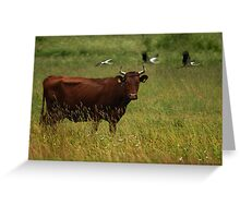 Cow and Storks Greeting Card