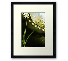 Boot In The Undergrowth Framed Print