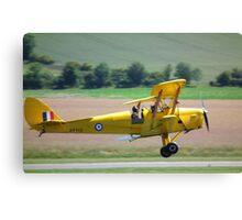 Tiger Moth Landing Canvas Print