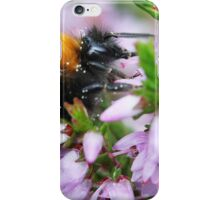 Bumble bee in Heather iPhone Case/Skin