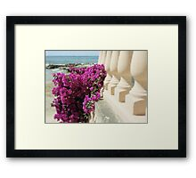 Bougainvillea by the sea Framed Print