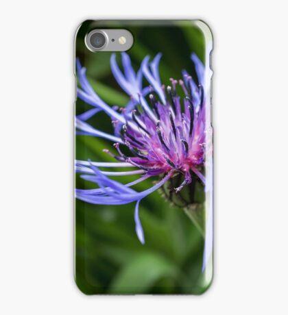 Cultivated Cornflower iPhone Case/Skin