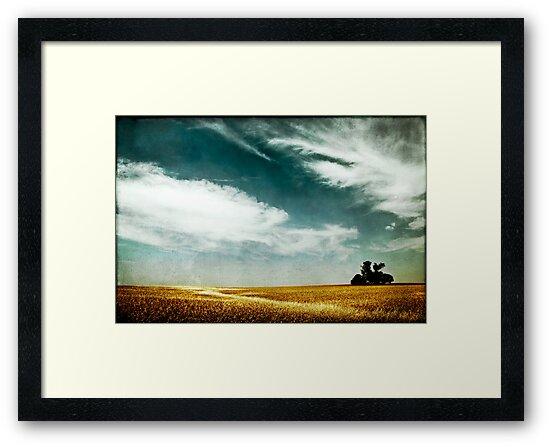 tree, sky and horizon by Victor Bezrukov