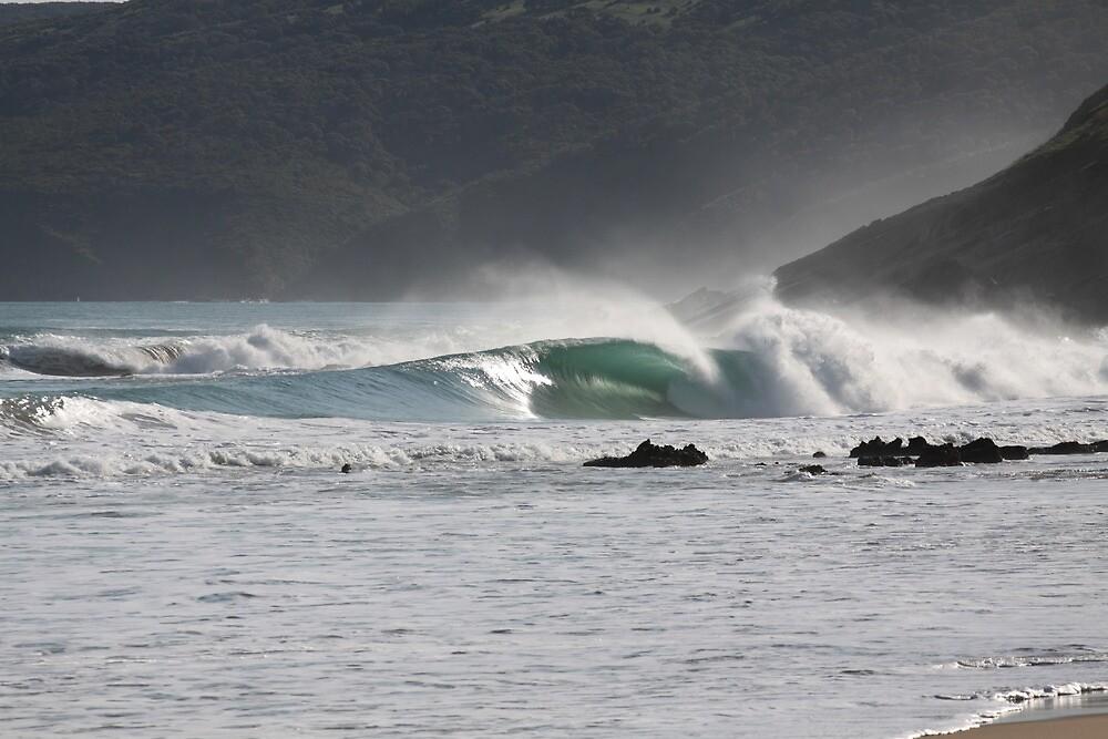 Secret Surf Perfection, South Australia by Samuel Squires