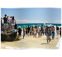Snapper Rocks top surfing location Poster