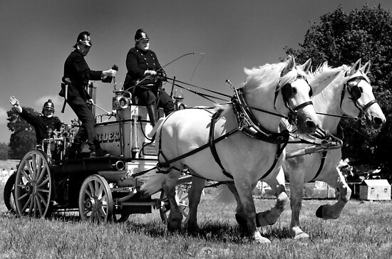 103-year-old horse drawn steam pump  by MWhitham