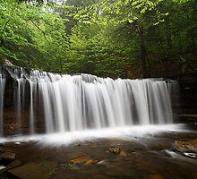 Oneida Falls II by Tim Devine