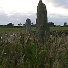 Knockmahon Ogham Stones,,Bunmahon,Co. Waterford,Ireland. by Pat Duggan