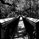 Suspension Bridge in Black & White  by BobJohnson
