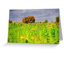 Rigby Idaho - Dreaming Of Sunflowers Greeting Card