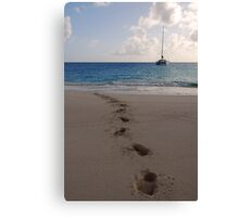 Coming Ashore Canvas Print