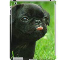 Black Pug iPad Case/Skin