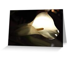 Le lis de lumiere Greeting Card