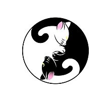 Yin Yang Cats by alee7spain