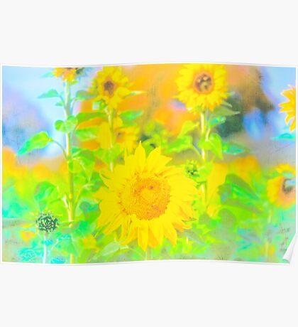 Rigby Idaho  Sunflower Feelings Poster