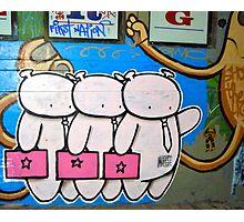 3 Little Pigs? Photographic Print