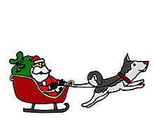 Funny Christmas Santa Sleigh with Husky Dog by naturesfancy