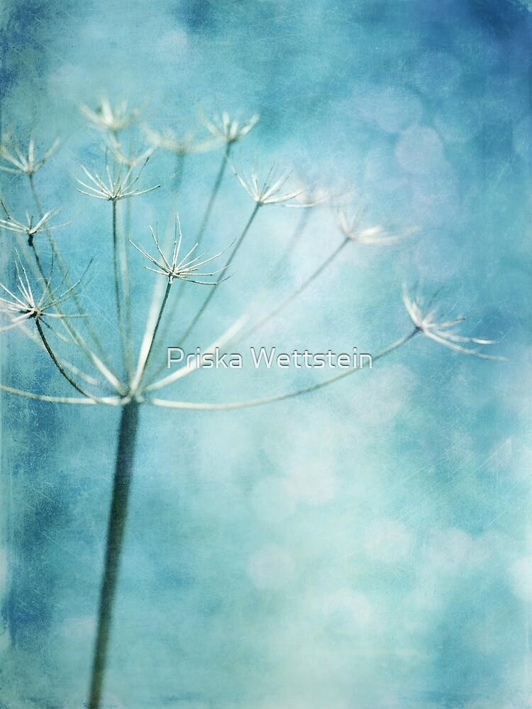 wintercolors by Priska Wettstein