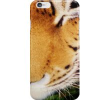 Tiger at the Bear Park; Live and Up Close iPhone Case/Skin