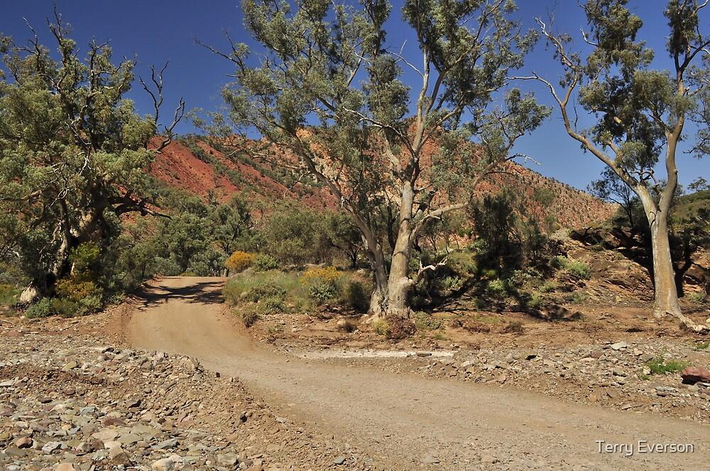 Brachina Gorge #3 by Terry Everson