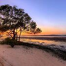 Inskip Point Calm Sunrise by Adam Gormley