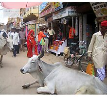 street scene, Jaisalmer, India Photographic Print