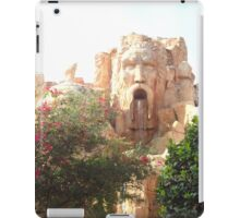 Face in the Rock iPad Case/Skin