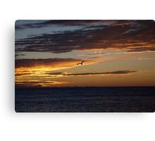 seascapes #270, painted Canvas Print
