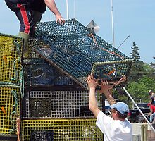 Packing Up Lobster Traps by RevJoc