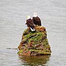 Eagle Mates by Jack McCallum