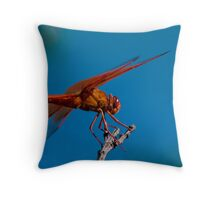 Flame Skimmer Throw Pillow