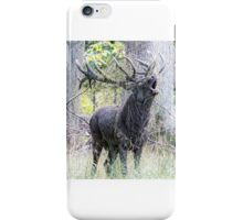 The rut is on iPhone Case/Skin