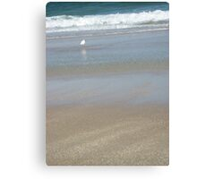 Egret's Day at the Beach Canvas Print