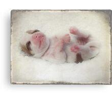 Puppy love... Canvas Print