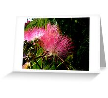 All Fluff & Feathers Greeting Card