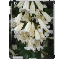 White bells Leith Park Victoria 20150916 0360     These cover the arches over the pathway to the community hall  iPad Case/Skin