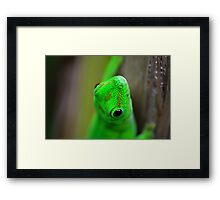 Energetic Nature Framed Print