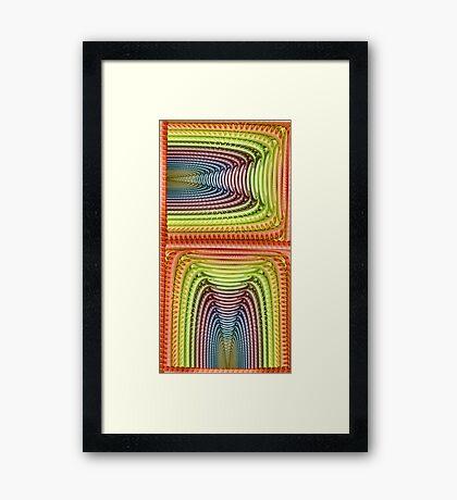 Disc Julian Rainbow Framed Print