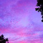 Beautful sunset by Courtneystarr