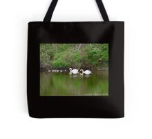 Swan and Cygnets Tote Bag