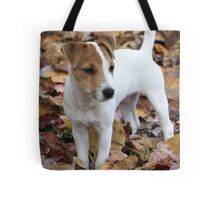 Jack In The Leaves Tote Bag