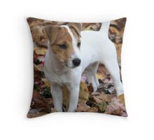 Jack In The Leaves Throw Pillow