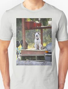 A dog day afternoon T-Shirt